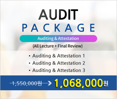 AICPA AUDIT PACKAGE